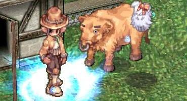 Year of the Ox……今年は敢えてコッチのウシで